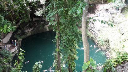 Cenote Zaki in Valladolid / Yucatan Mexico