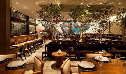 Seguro Plan Protege Restaurante