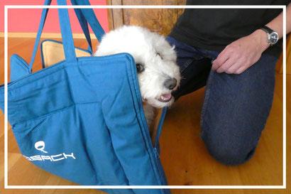 QSack Hundedecke von Univok