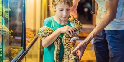 Dierentuin korting zomervakantie