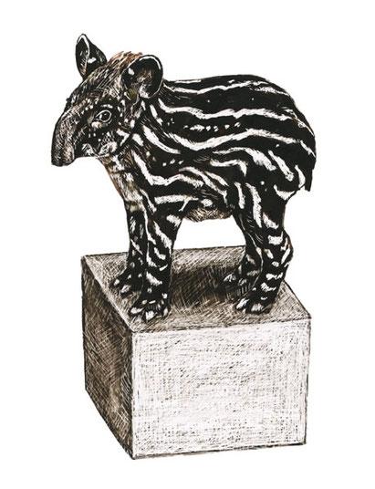 Tapir & Klotz