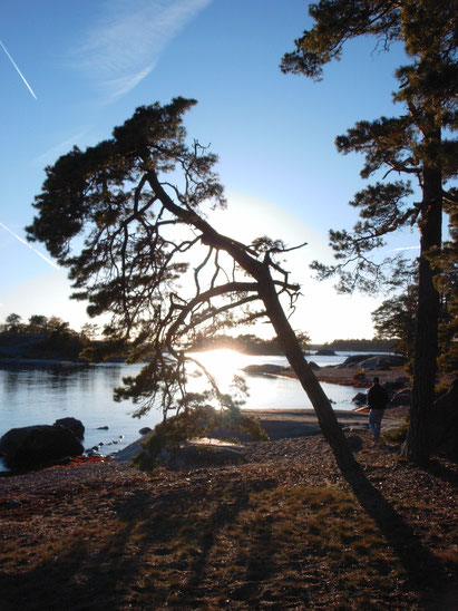 Strand Ostsee Dragskär Oskarshamn