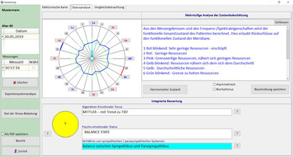 Messergebnisse der Meridiane als Kreisdiagramm dargestellt und Grobbewertungrgestellt