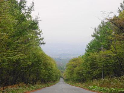 馬返しからの帰り道での眺め。登山口まで結構な坂を上ってきたことがわかります。