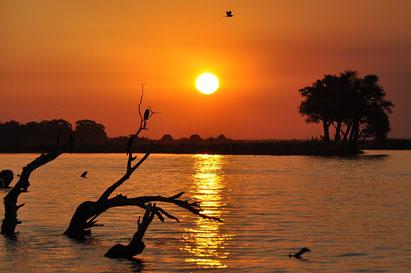 Sonnenuntergang auf einer Botswana-Reise