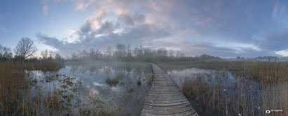 Panorama Beekbergerwoud