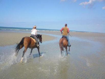 séjour-chevaux-gite équestre-baie-de-somme