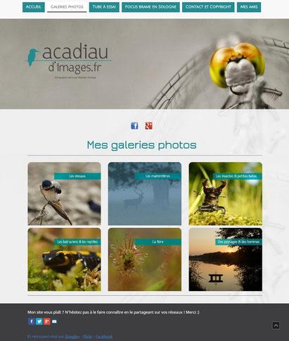 Le site de photos nature d'Alexandre Roubalay, installé à Lassay-sur-Croisne, entre Sologne et Vallée du Cher - www.acadiaudimages.fr