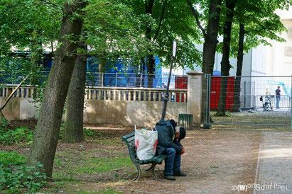 der Große Tiergarten hält für alle ein Plätzchen bereit