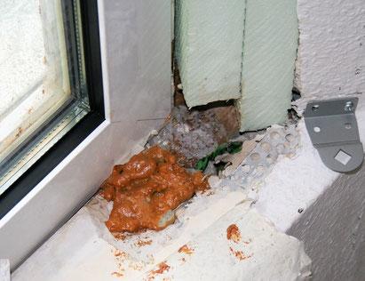 Nicht fachgerecht luftdicht ausgebildeter Wandanschluss an ein Dachfenster.