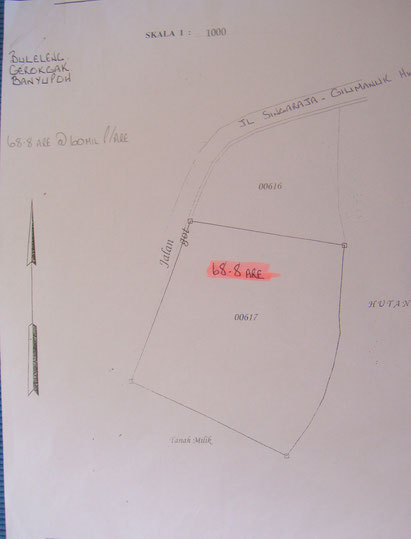 Land for sale in North Bali.
