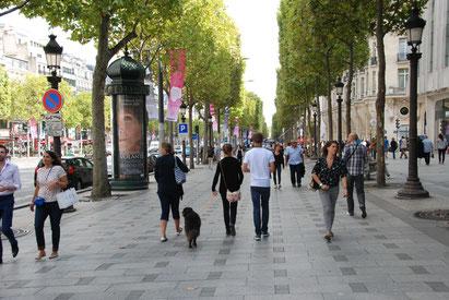 Mit Hund unterwegs auf den Champs-Elysees, Paris, Frankreich