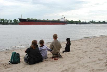 Familie mit Hund und Schiff am Ufer der Elbe