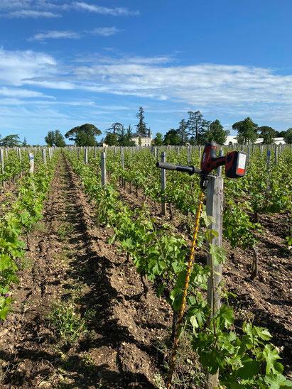 aquafox, irrigation, humidité du sol,sonde capacitive, agralis