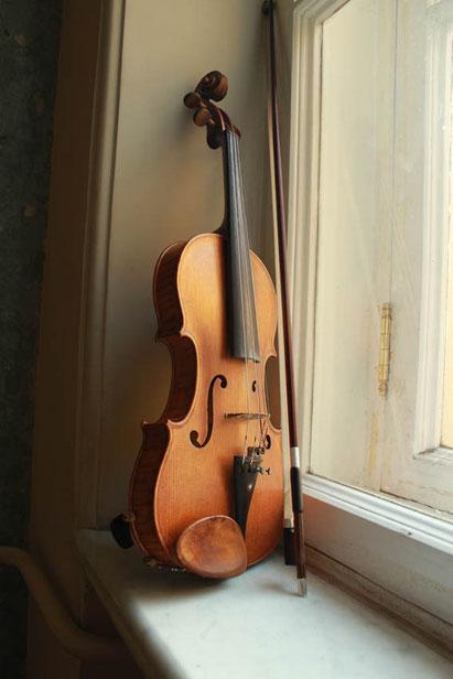 Портрет скрипки