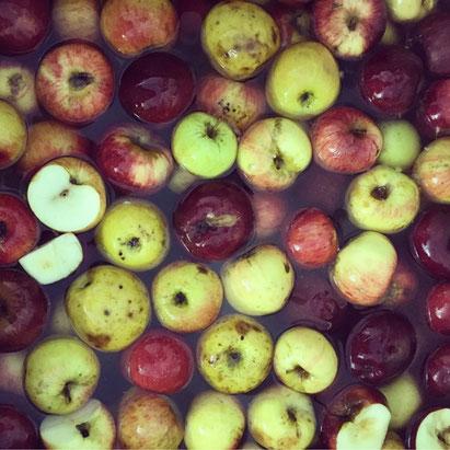 pomme poire abimés moche pourris