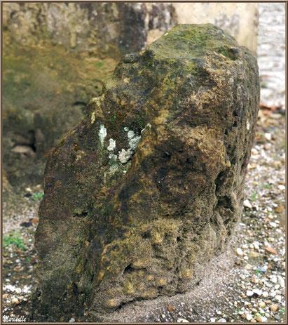 La pierre levée à l'extérieur de l'église Saint Pierre de Mons à Belin-Beliet, Gironde
