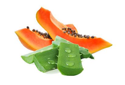 Aloe Vera mit natürlichem Anteil essentieller Aminosäuren