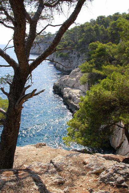Bild: Wanderung in der Calanque de Port Miou