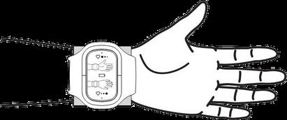 schematische Darstellung, wie das Inferum ABP 051 angelegt wird, um eine blutdrucksenkende Wirkung zu erzielen