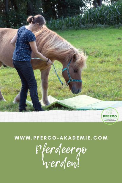 Pferdeergo werden! Hier siehst Du Pferdeergotherapeutin Karo Kardel beim Pferdetraining mit instabilen Untergründen - eine beliebte und sinnvolle Übung bei der Ergotherapie für Pferde.