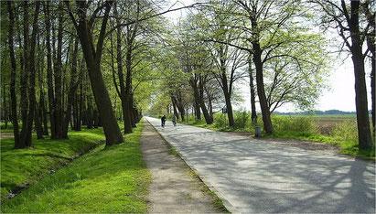 Der Hase-Ems-Radweg