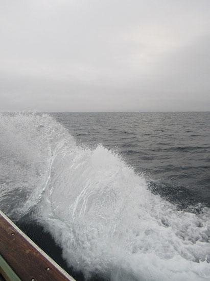 やや波がありました
