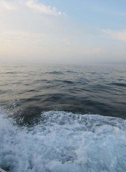 水面の霧と陽射し