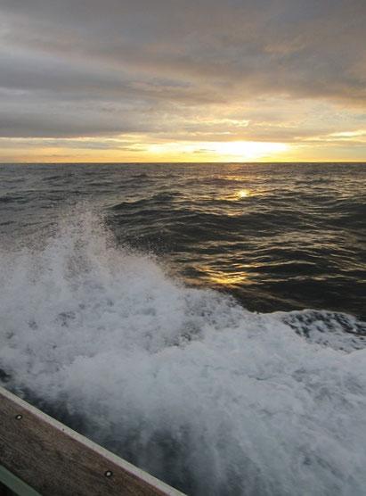 波が高かった