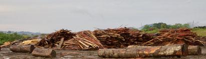 Blu Karb valorise les déchets de bois pour produire du charbon de bois