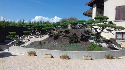 Niwaki : taille d'arbustes en nuages à Francheleins dans l'Ain (01)