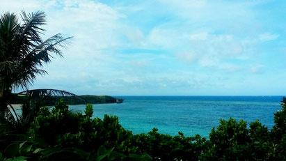 24日の沖縄県民投票で、名護市辺野古新基地建設反対は43万4273票。
