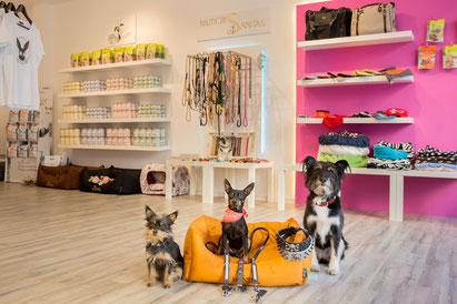 Hundefutter, München, Shop, High End