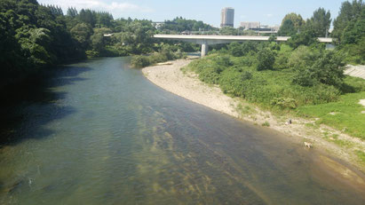 仙台市 広瀬川