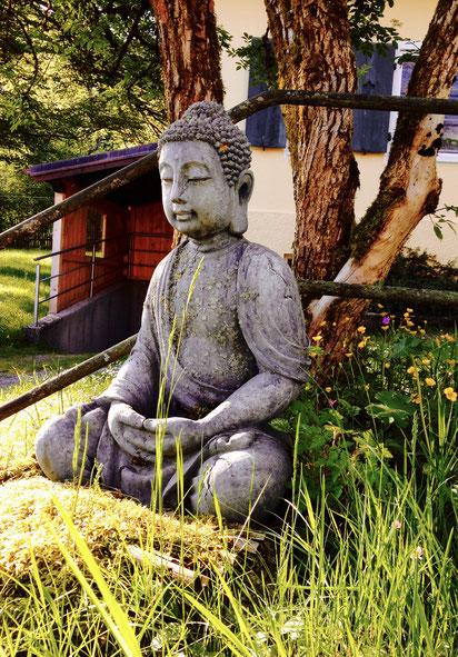 Yoga Auszeit Mit Ernahrungsworkshop Am Schliersee Katharina Utzs Webseite