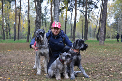 Fil Van Tip-Top Alfa Romeo (mini) and Gloris Harley Devidson (giant) and 6 month old Akarel Aphrodite (the daughter of Harley), 25/10/15, Moscow, Russia