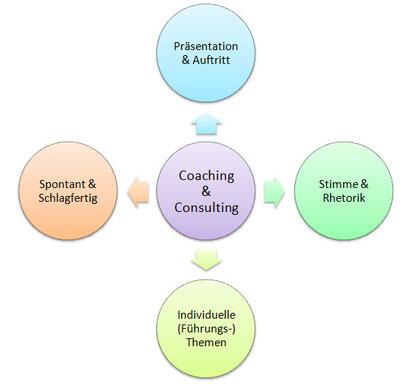 Bild: Module Coaching Consulting kombiniert mit Training Stimme Präsentation und Spontanität Karin Neidhart