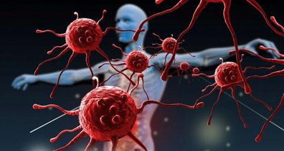 systeme immunitaire comment le renforcer