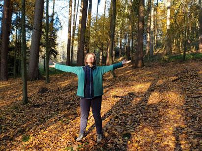Qigong: zu den Baumkronen öffnen, Kraft aufnehmen