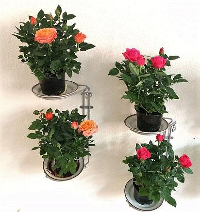 Affaldssortering til et skab i et køkken med affaldstativer fra affaldssorteringssystem Flower4, som planteholder 3