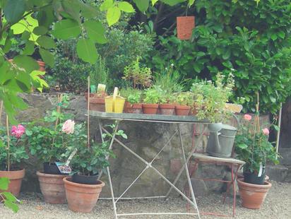 inspiration jardin de senteurs, jardin parfumé