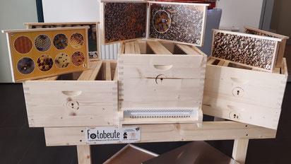 15 solcher Fotobeuten-Komplettsysteme ermöglichen bienenfreie Einblicke ins Bienenvolk