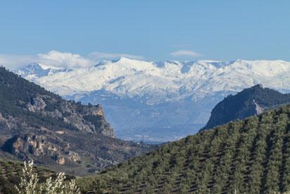 Blick auf einen Teil der Sierra Nevada