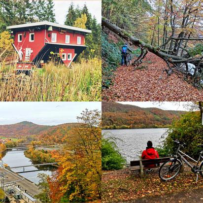 Affolderner See, Hessen, Nordhessen, Erlebnisregion, Freizeitparadies, Fahrradtour, Wandern, Nationalpark Kellerwald, Unesco Weltnaturerbe, Buchenwälder