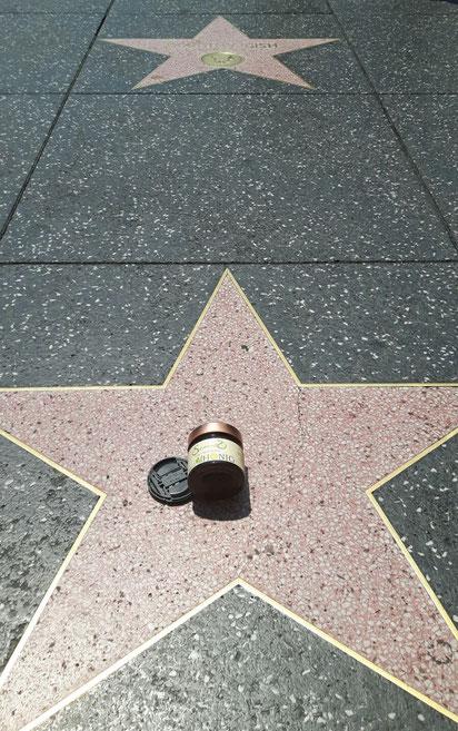 Bio-Honig auf Reisen am Hollywood Boulevard