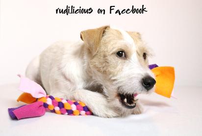 rudi.licious Facebook