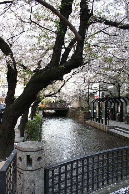 Petit pont sur le Canal Takasegawa