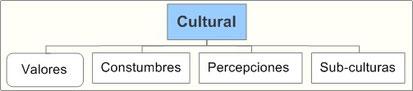 Análisis Entorno Cultural