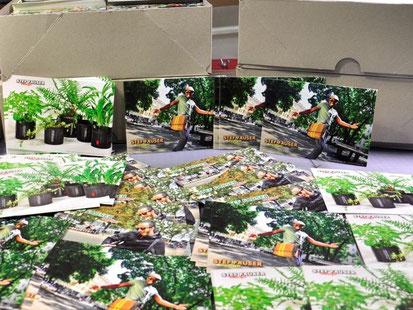 Postkarten und Werbeflyer von Stef Fauser Design sind noch druckfrisch.