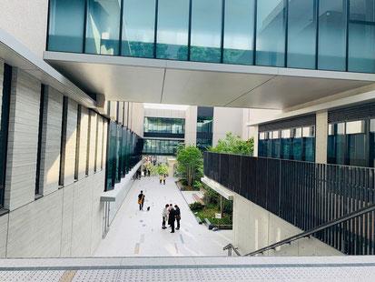 東京音楽大学 たまプラーザ 武蔵小杉 ピアノ教室